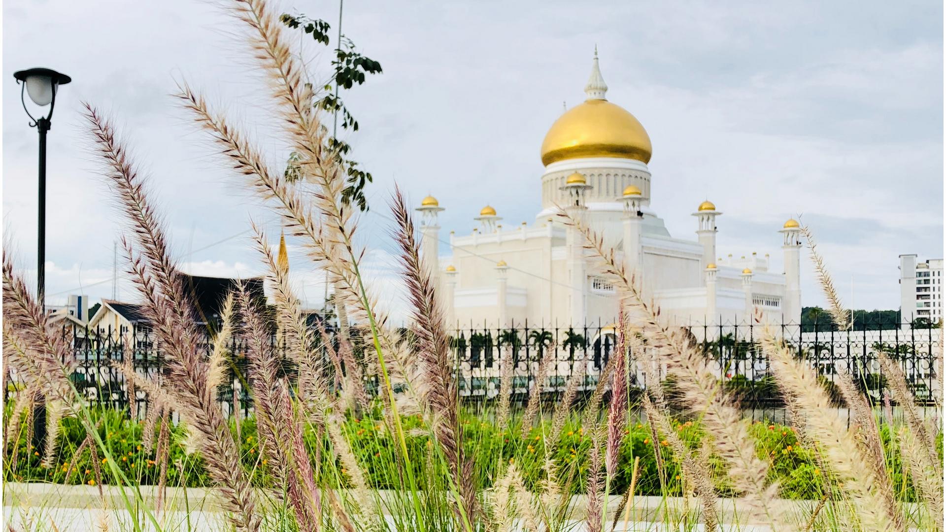 A view in Brunei