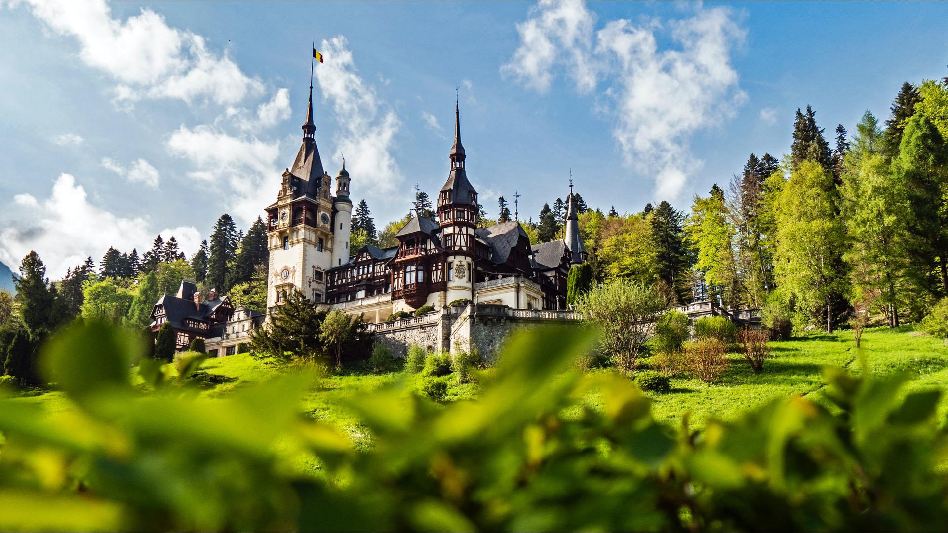 A view in Romania