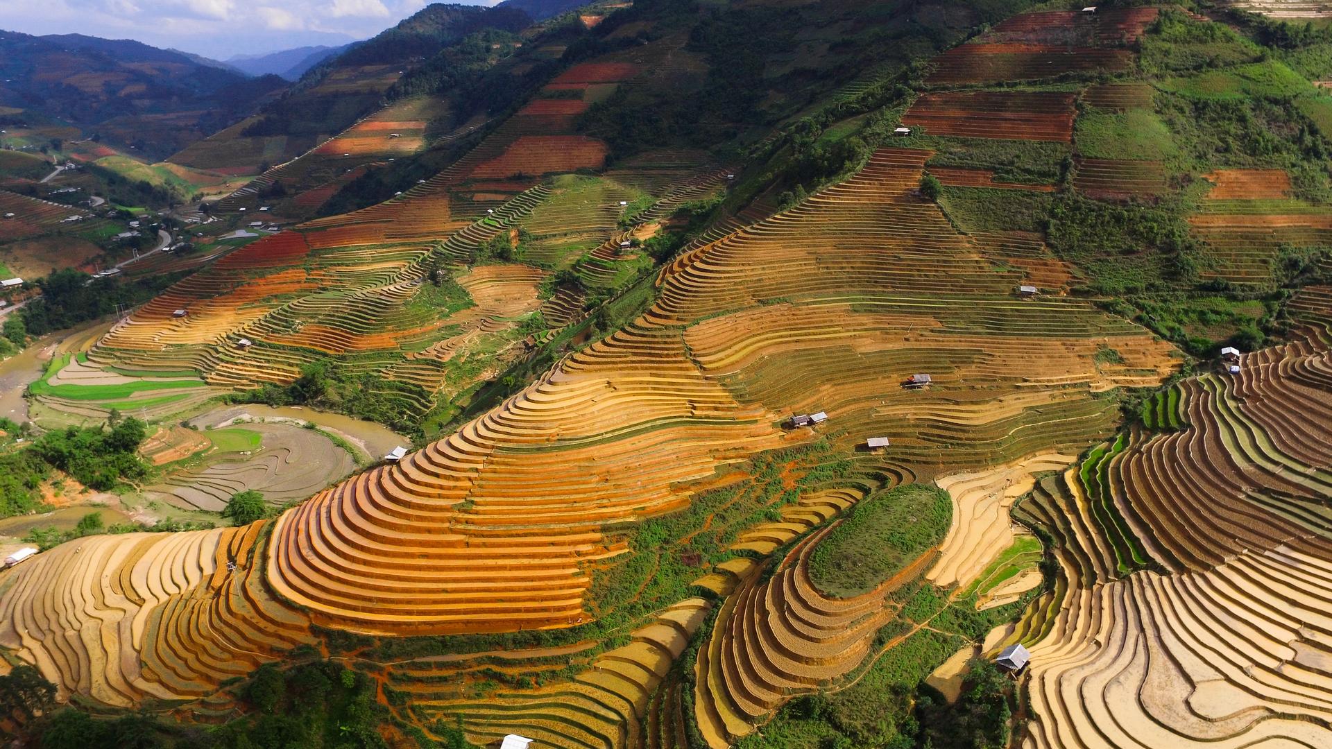 A view in Vietnam