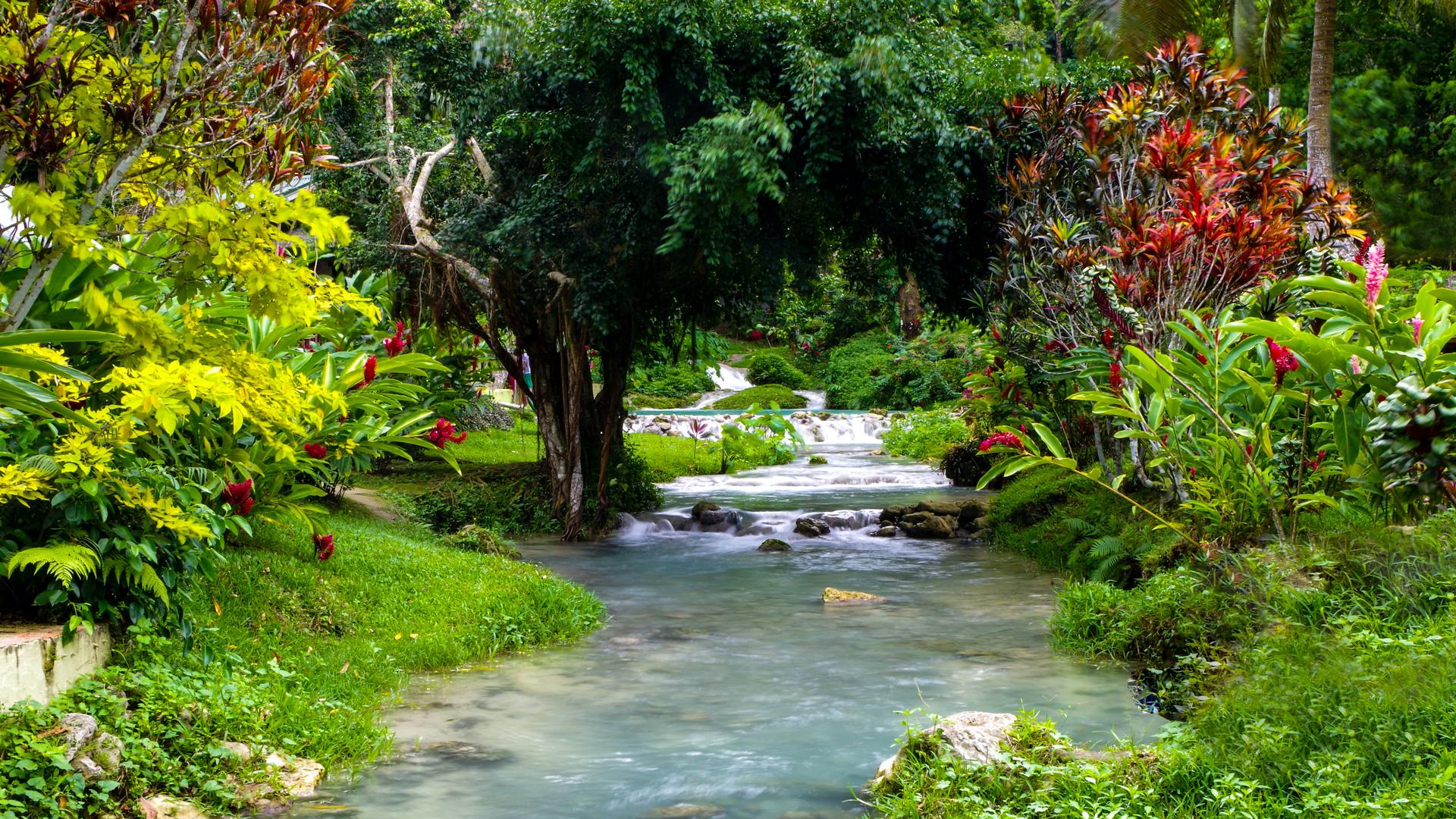 A view in Vanuatu